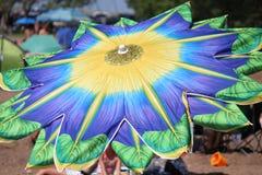 Parapluie de floraison Photographie stock