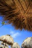 Parapluie de paille sur la plage de Bavaro Image libre de droits