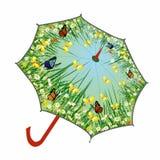 Parapluie de ressort Photos libres de droits