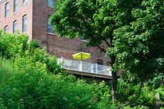 Parapluie jaune Images libres de droits