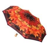 Parapluie lumineux Images stock