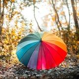 Parapluie multicolore d'arc-en-ciel dans la forêt Photos libres de droits