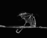 Parapluie noir et blanc de l'eau Photos stock