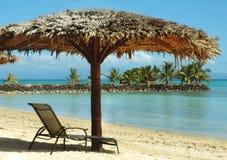 Parapluie tropical Photos libres de droits