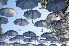Parapluies accrochant sur les arbres, les vacances Photos stock