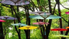 Parapluies chinois aucun de gare Images libres de droits