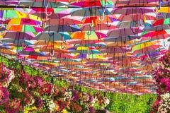 Parapluies colorés dans le jardin de miracle de Dubaï Photos stock
