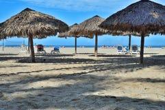 Parapluies de plage des palmettes sur une étendue de plage sur la côte atlantique, avec des fainéants du soleil et des personnes  photographie stock libre de droits
