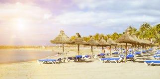 Parapluies et canapés de paille sur le Playa De Las Amériques, Tener Image stock
