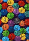 Paraplupatroon Stock Fotografie