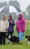 paraply Royaltyfria Foton