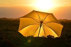 Paraply av solen Royaltyfria Foton