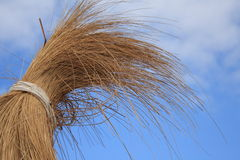 paraply för sun för blå sky för bambu under Royaltyfria Foton