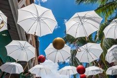 Paraply ovanför huvudet i Port Louis, Mauritius Royaltyfria Bilder