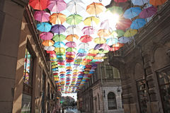 Paraplyer färgrika 7 royaltyfria foton