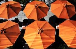 Paraplyer i sommar Royaltyfri Foto