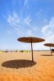 Paraplyer på sandig strand Arkivbild