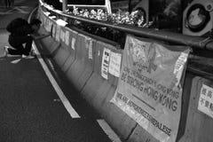 Paraplyrevolution i vägbankfjärd Royaltyfria Bilder