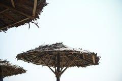 Paraplystrand royaltyfri bild