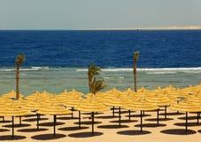 Parasóis da praia no seacoast Imagem de Stock