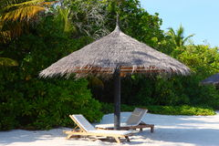 Parasóis na praia de Maldivas Imagem de Stock