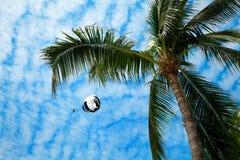parasailing Royaltyfri Fotografi