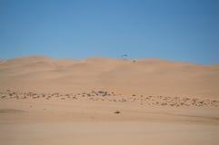 Parasailing off a Sand Dune near Swakopmund, Namibia Stock Photography