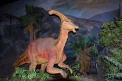 Parasaurolophus恐龙与实物大小一样的模型在dinotopia泰国帕克的 库存照片