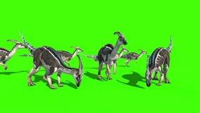 Parasaurolophus Jurassic World Dinosaurs Green Screen 3D Rendering Animation