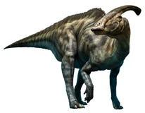 Parasaurolophus walkeri Arkivfoto