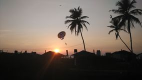 Paraselling in goa Royalty Free Stock Photo