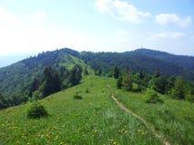 Parashka berg, berg Carpathians Arkivbilder