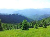 Parashka berg, berg Carpathians Arkivbild