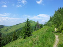 Parashka mountain, mountains Carpathians. Parashka Mount, Carpathian mountains, hike in the mountains, , the beauty of mountains Royalty Free Stock Photo