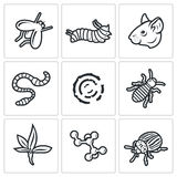 Parasites icons set. Vector Illustration. Royalty Free Stock Images