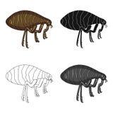 Parasitizing flea single icon in cartoon,black,outline,monochrome style for design.Pest Control Service vector symbol. Stock illustration Stock Photo