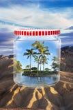 Paraíso em um frasco. Imagens de Stock Royalty Free
