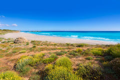Paraíso mediterrâneo da praia de Menorca Platja de Binigaus Foto de Stock