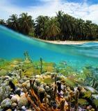 Paraíso subacuático Fotos de archivo libres de regalías