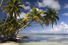 Paraíso tropical de la isla - islas de cocinero Imagen de archivo libre de regalías