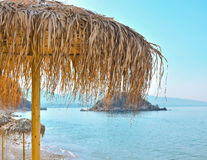 Parasols on the coast. Beautiful, palm beach  umbrellas at the beach Stock Photography