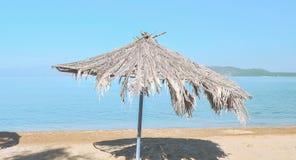 Beach umbrella. Palm beach umbrellas at the beach Stock Images
