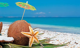 Parasol in a coconut Stock Photo