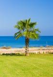 Parasol de paille sur la mer Photos stock