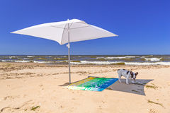 Parasol and dog on the beach of Baltic Sea Royalty Free Stock Photo