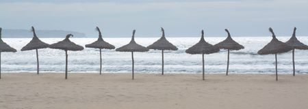 Parasol lineup panorama. On sandy beach with white sunny ocean and soft blue sky Royalty Free Stock Images