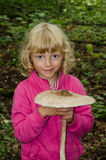 Parasol mushroom Stock Photos