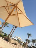 A parasol near a swimming pool. Sunny day near a swimming pool, palms behind, holiday Royalty Free Stock Photography