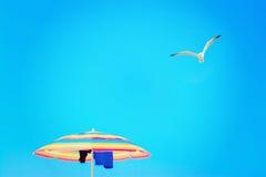 Parasol onder een vliegende zeemeeuw royalty-vrije stock afbeeldingen