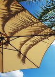 Parasol, Palm and Blue Sky. Chilling in the shade under a palm tree and parasol with the blue sky and puffy clouds above Stock Photography